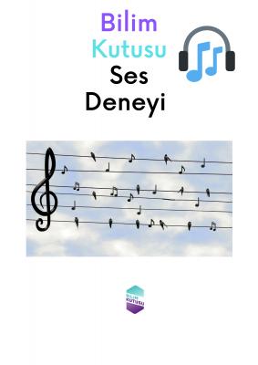 Deney Okulu Seçmeceleri: Bardakta Müzik!