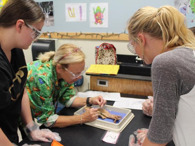 9 Maddede öğrenciler bilimi nasıl öğrenir?
